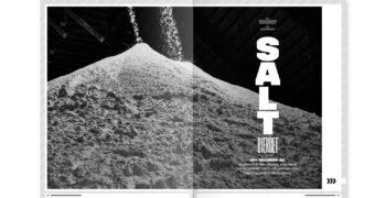 Layout af artikel om Dansk Salt A/S